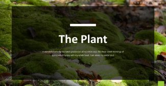 Plants Powerpoint Template